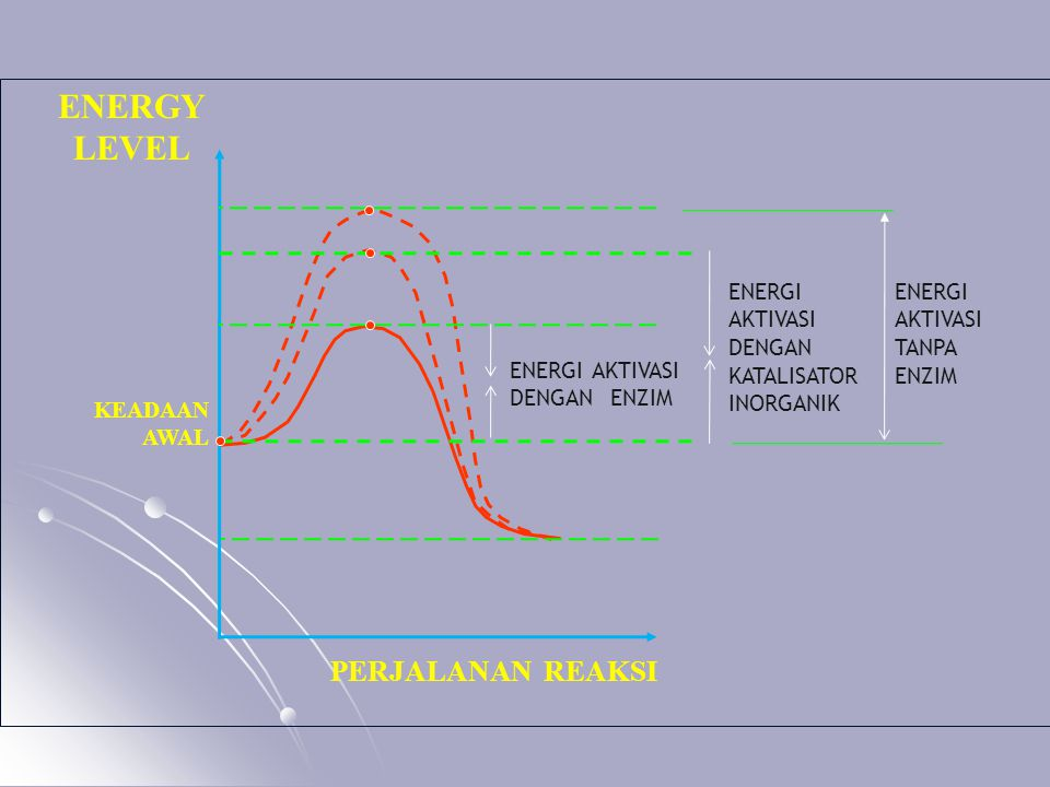 ENERGI AKTIVASI DENGAN ENZIM ENERGI AKTIVASI DENGAN KATALISATOR INORGANIK ENERGI AKTIVASI TANPA ENZIM PERJALANAN REAKSI KEADAAN AWAL ENERGY LEVEL