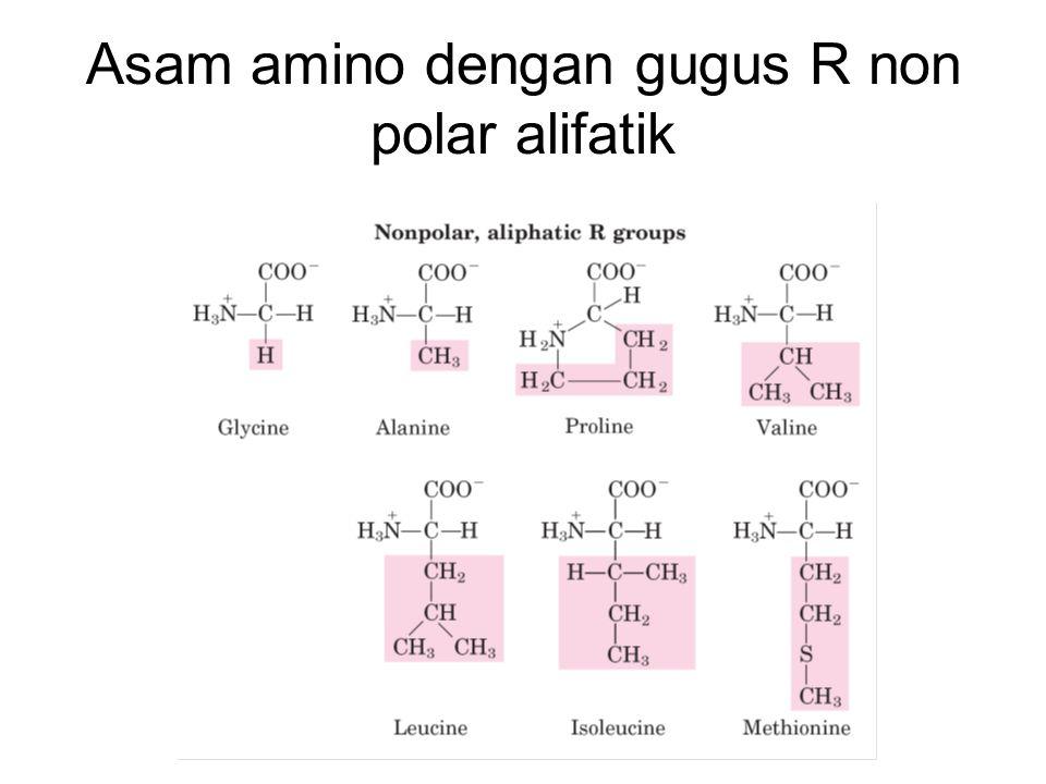 Asam amino dengan gugus R non polar alifatik