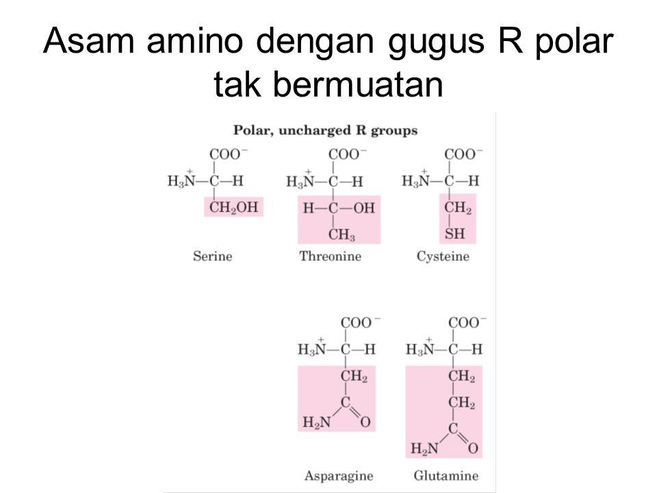 Asam amino dengan gugus R polar tak bermuatan