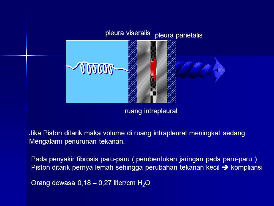 pleura viseralis pleura parietalis ruang intrapleural Jika Piston ditarik maka volume di ruang intrapleural meningkat sedang Mengalami penurunan tekanan.