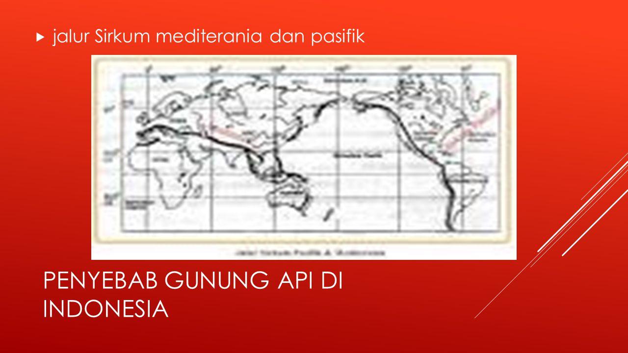 PENYEBAB GUNUNG API DI INDONESIA  jalur Sirkum mediterania dan pasifik