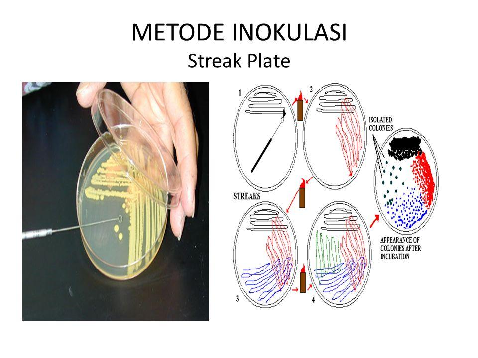 METODE INOKULASI Streak Plate