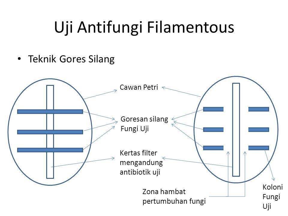 Uji Antifungi Filamentous Teknik Gores Silang Cawan Petri Kertas filter mengandung antibiotik uji Goresan silang Fungi Uji Zona hambat pertumbuhan fungi Koloni Fungi Uji
