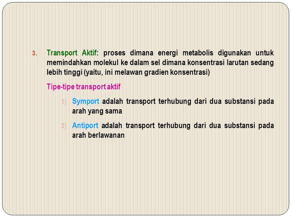 3. Transport Aktif: proses dimana energi metabolis digunakan untuk memindahkan molekul ke dalam sel dimana konsentrasi larutan sedang lebih tinggi (ya