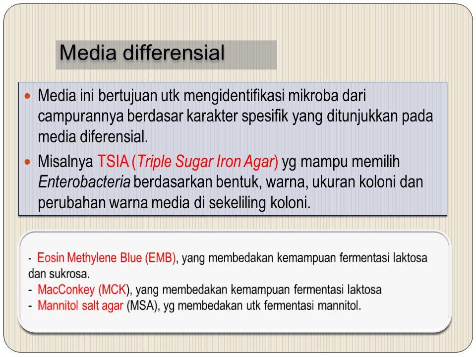 Media differensial Media ini bertujuan utk mengidentifikasi mikroba dari campurannya berdasar karakter spesifik yang ditunjukkan pada media diferensial.
