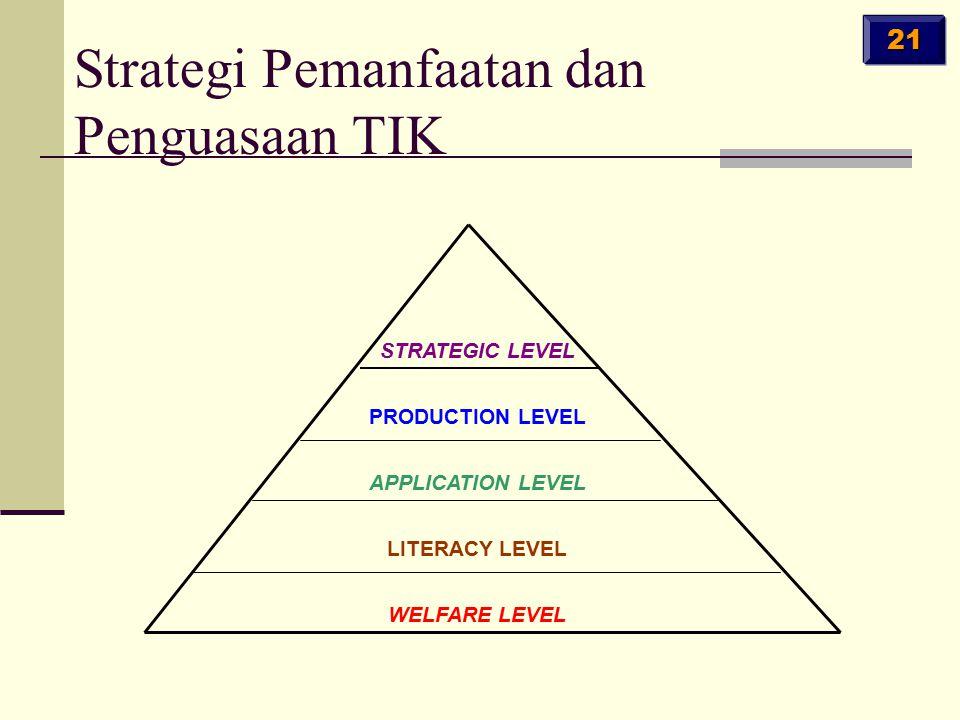 Welfare level: food, shelter, language, skills; Literacy level: Basic IT skills; Application level: IT for work performance; Productivity level: make IT systems, products services; Strategic level: interpret, direct, manage IT.