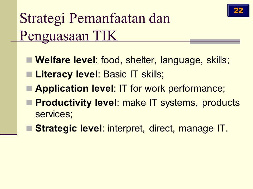Welfare level: food, shelter, language, skills; Literacy level: Basic IT skills; Application level: IT for work performance; Productivity level: make