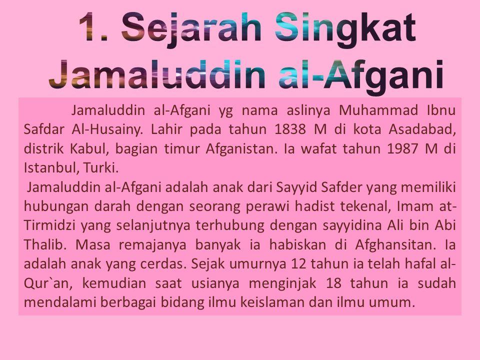 Jamaluddin dikenal sebagai pemimpin pergerakan dan politik dari pada sebagai pemikir reformis dan modernisasi dalam islam.