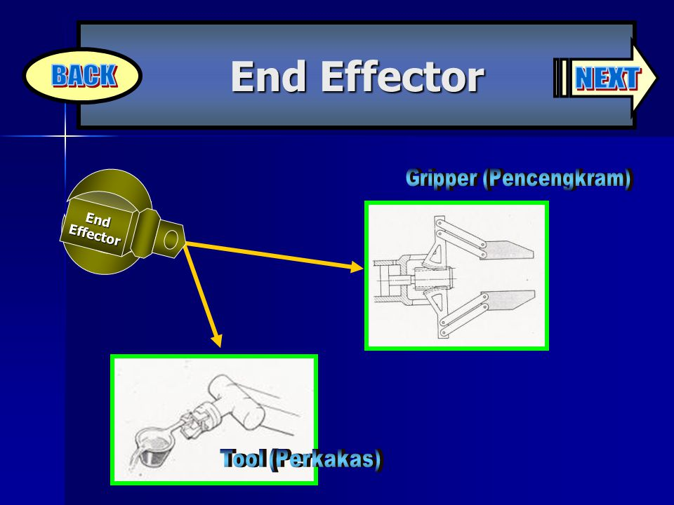 End Effector End Effector