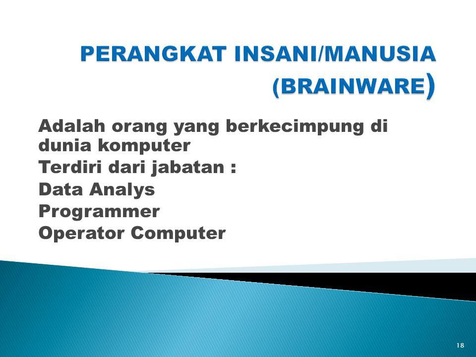 Adalah orang yang berkecimpung di dunia komputer Terdiri dari jabatan : Data Analys Programmer Operator Computer 18