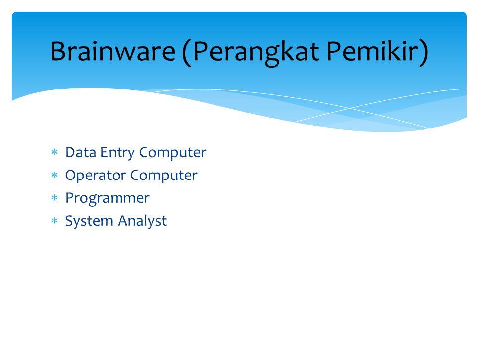  Data Entry Computer  Operator Computer  Programmer  System Analyst Brainware (Perangkat Pemikir)