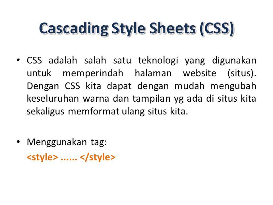 CSS adalah salah satu teknologi yang digunakan untuk memperindah halaman website (situs).