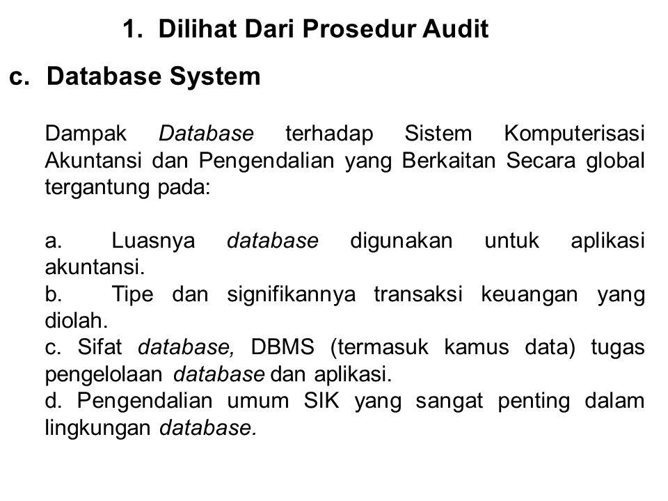 1.Dilihat Dari Prosedur Audit c.Database System Dampak Database terhadap Sistem Komputerisasi Akuntansi dan Pengendalian yang Berkaitan Secara global