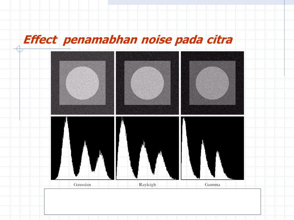 H.R. Pourreza Effect penamabhan noise pada citra