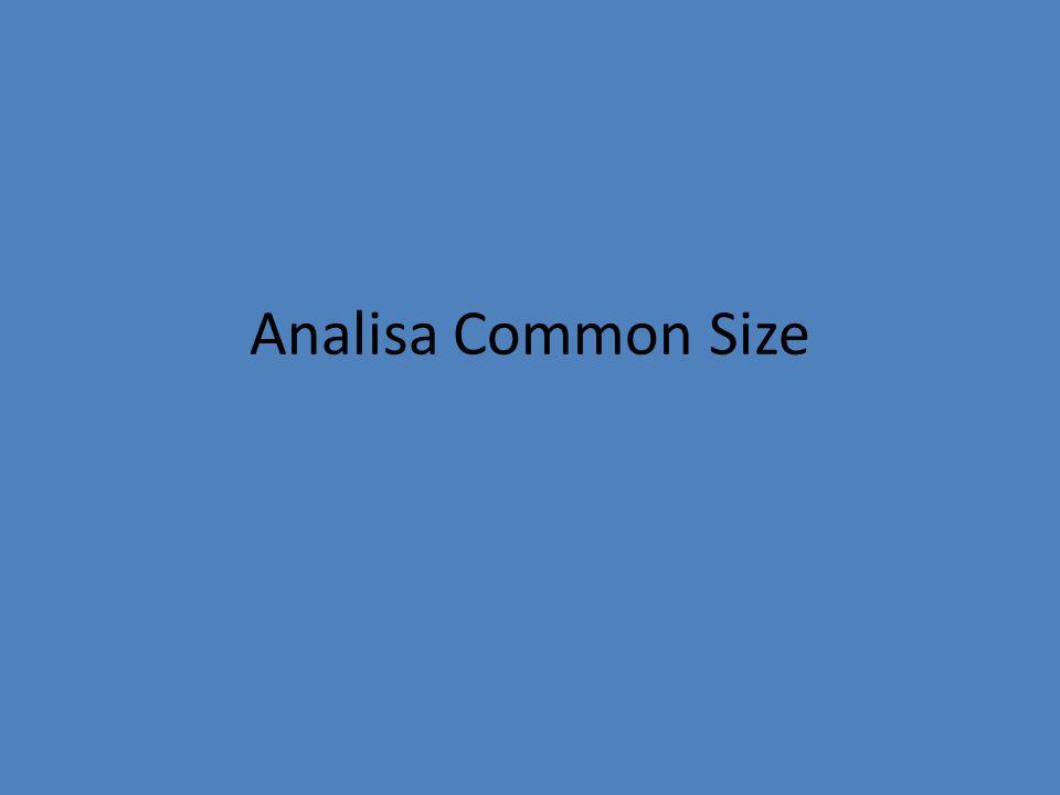 Analisa Common Size
