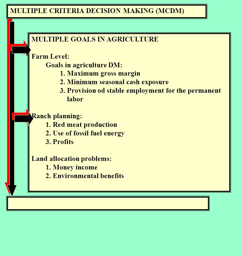 MULTIPLE CRITERIA DECISION MAKING (MCDM) MULTIPLE GOALS IN AGRICULTURE Farm Level: Goals in agriculture DM: 1.
