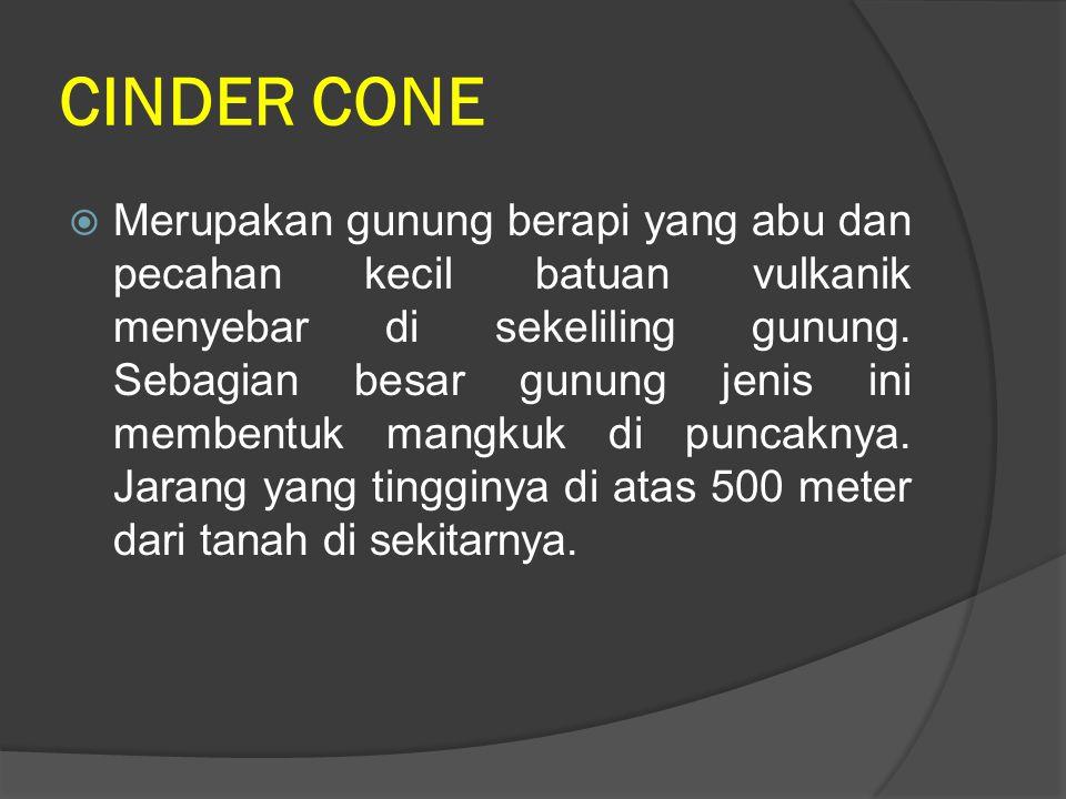 CINDER CONE  Merupakan gunung berapi yang abu dan pecahan kecil batuan vulkanik menyebar di sekeliling gunung. Sebagian besar gunung jenis ini memben