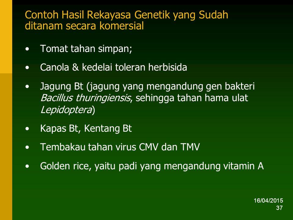 16/04/2015 37 Contoh Hasil Rekayasa Genetik yang Sudah ditanam secara komersial Tomat tahan simpan; Canola & kedelai toleran herbisida Jagung Bt (jagung yang mengandung gen bakteri Bacillus thuringiensis, sehingga tahan hama ulat Lepidoptera) Kapas Bt, Kentang Bt Tembakau tahan virus CMV dan TMV Golden rice, yaitu padi yang mengandung vitamin A