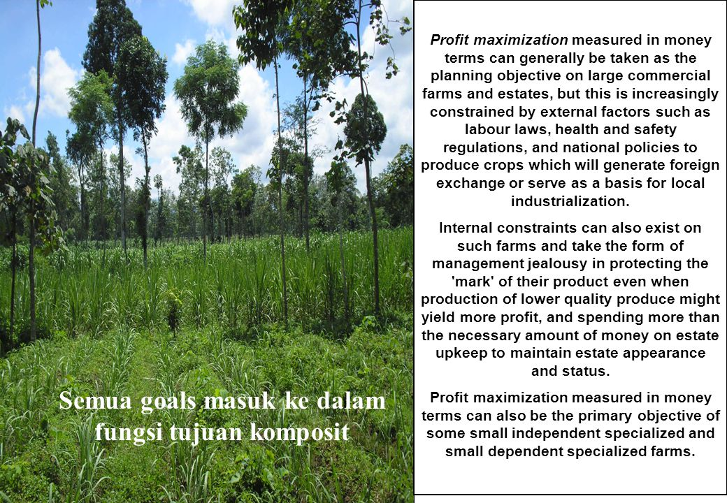 Semua goals masuk ke dalam fungsi tujuan komposit Profit maximization measured in money terms can generally be taken as the planning objective on large commercial farms and estates, but this is increasingly constrained by external factors such as labour laws, health and safety regulations, and national policies to produce crops which will generate foreign exchange or serve as a basis for local industrialization.