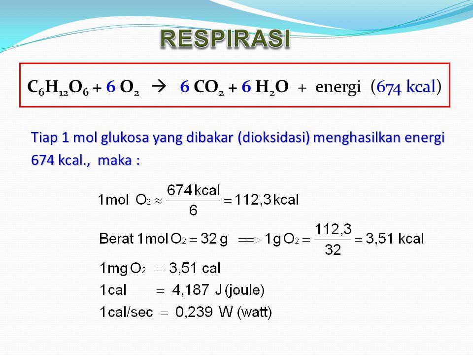 C 6 H 12 O 6 + 6 O 2  6 CO 2 + 6 H 2 O + energi (674 kcal) Tiap 1 mol glukosa yang dibakar (dioksidasi) menghasilkan energi Tiap 1 mol glukosa yang d