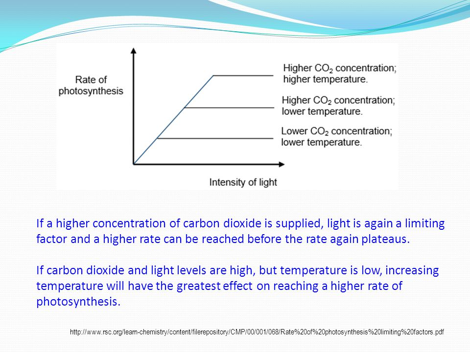 If a higher concentration of carbon dioxide is supplied, light is again a limiting factor and a higher rate can be reached before the rate again plateaus.