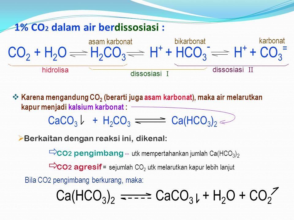 1% CO 2 dalam air berdissosiasi :  Karena mengandung CO 2 (berarti juga asam karbonat), maka air melarutkan kapur menjadi kalsium karbonat : CaCO 3 +