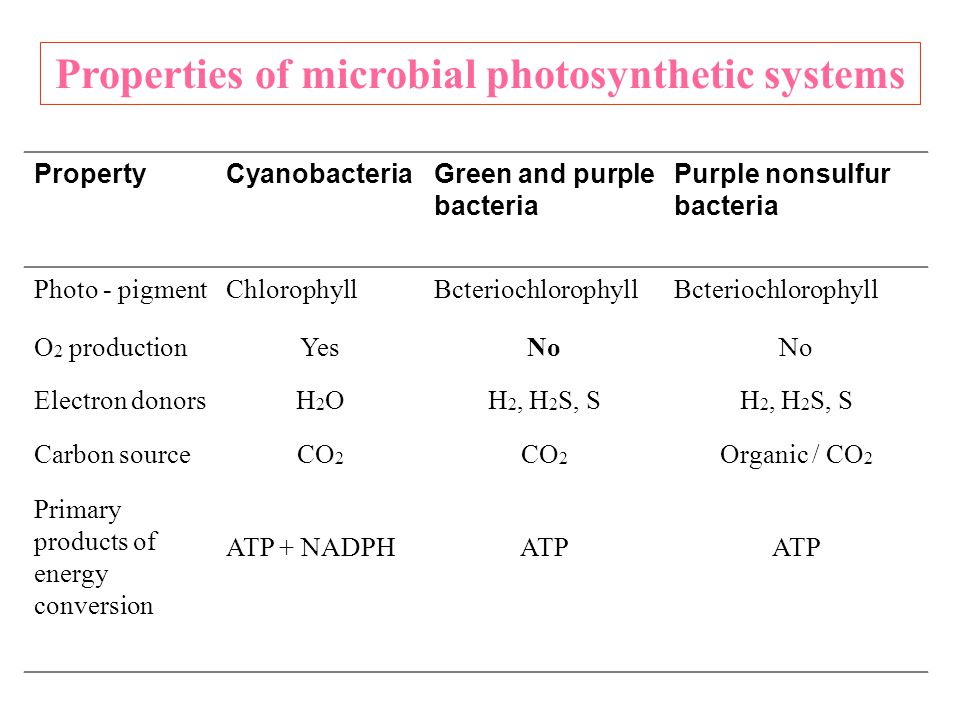 PropertyCyanobacteriaGreen and purple bacteria Purple nonsulfur bacteria Photo - pigmentChlorophyllBcteriochlorophyll O 2 productionYesNo Electron don