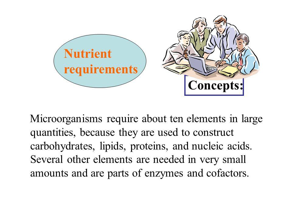 Nutrisi Mikrobia: Tipe nutrisi mikrobia Berdasarkan sumber karbon: Heterotrof: organik, e.g.