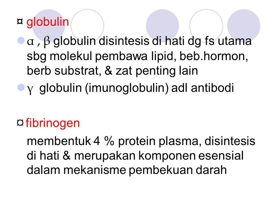 ¤ globulin α, β g lobulin disintesis di hati dg fs utama sbg molekul pembawa lipid, beb.hormon, berb substrat, & zat penting lain γ g lobulin (imunoglobulin) adl antibodi ¤ fibrinogen membentuk 4 % protein plasma, disintesis di hati & merupakan komponen esensial dalam mekanisme pembekuan darah