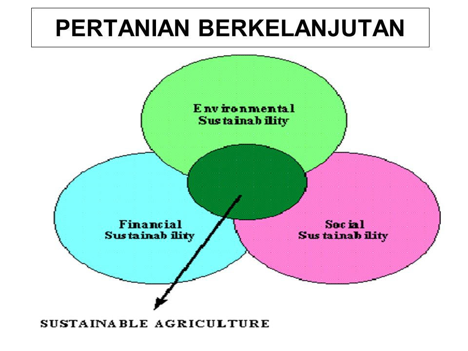 The FAO (1991): Several basic criteria to measure the sustainability of present agriculture and future trends, as follows: 1.Meeting the food needs of present and future generations in terms of quantity and quality and the demand for other agricultural products.