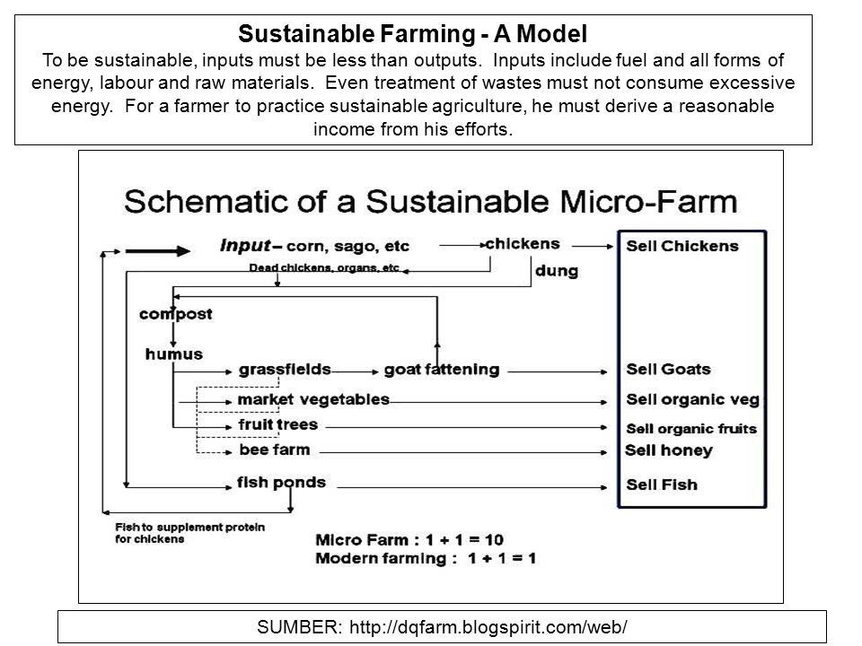 Sustainable Farming - A Model To be sustainable, inputs must be less than outputs. Inputs include fuel and all forms of energy, labour and raw materia