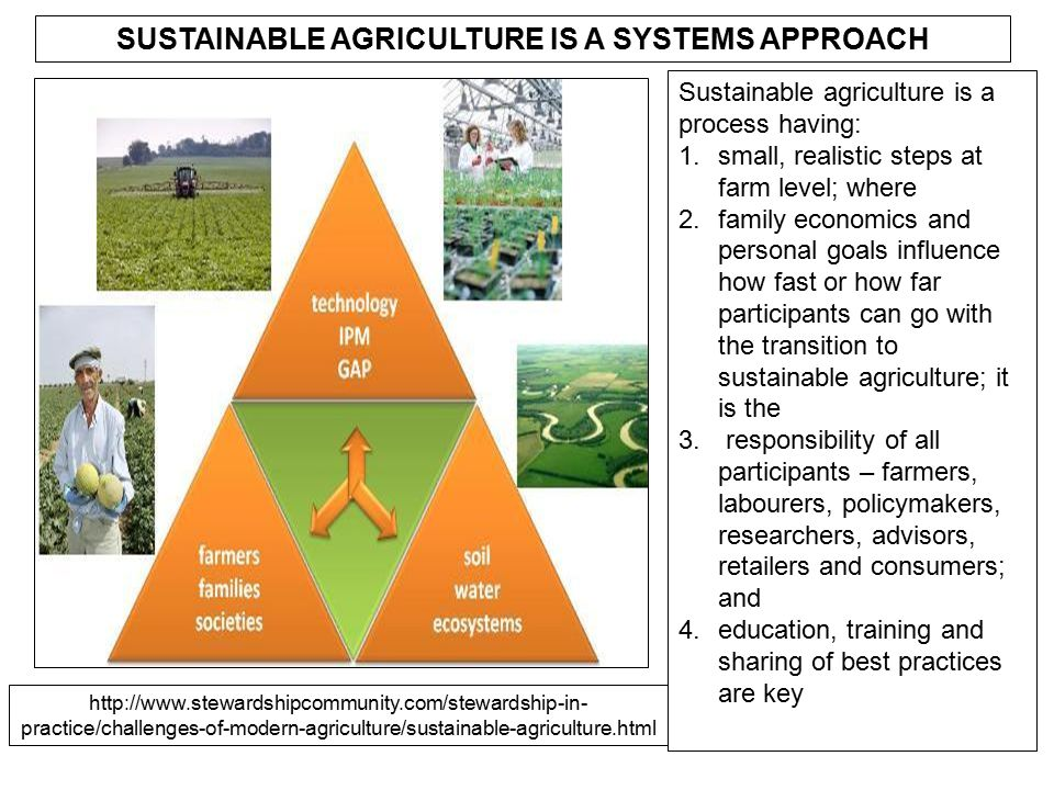 SUSTAINABLE AGRICULTURE IS A SYSTEMS APPROACH Sustainable agriculture is a process having: 1.small, realistic steps at farm level; where 2.family econ