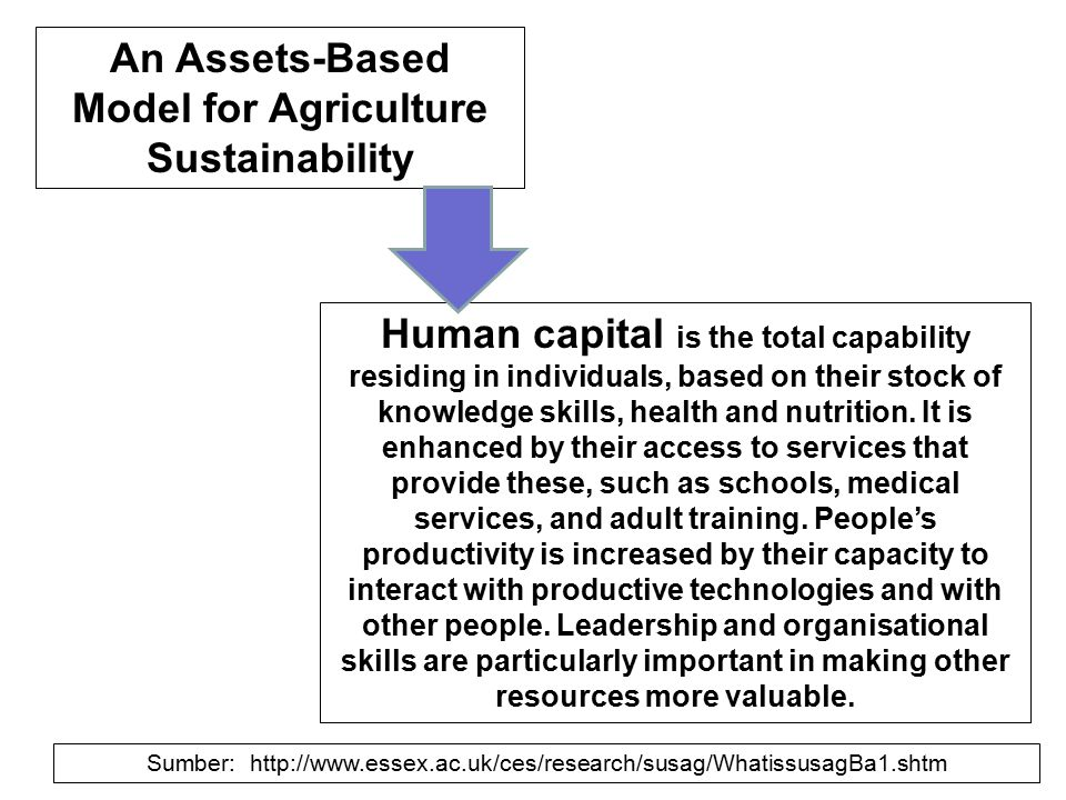 Human capital is the total capability residing in individuals, based on their stock of knowledge skills, health and nutrition. It is enhanced by their