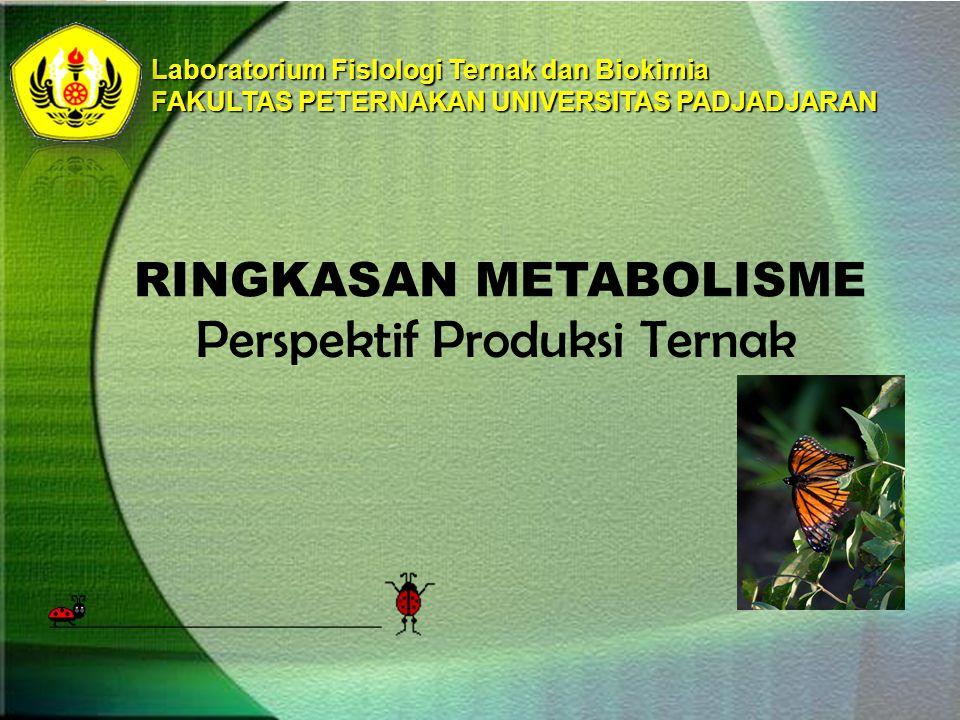 Laboratorium FisIologi Ternak dan Biokimia FAKULTAS PETERNAKAN UNIVERSITAS PADJADJARAN RINGKASAN METABOLISME Perspektif Produksi Ternak