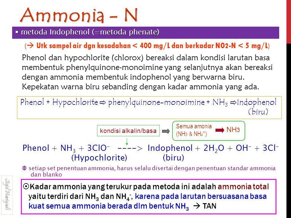 Phenol dan hypochlorite (chlorox) bereaksi dalam kondisi larutan basa membentuk phenylquinone-monoimine yang selanjutnya akan bereaksi dengan ammonia