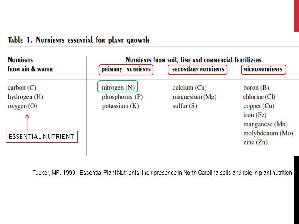 Respirasi Nitrat (denitrifikasi): 5.2NH 4 + + 3O 2  2NO 2 - + 4H + + 2H 2 O 6.2 NO 2 - + O 2  2 NO 3 - Nitrifikasi:  melibatkan bakteri nitrifikasi Nitrosomonas Nitrobacter