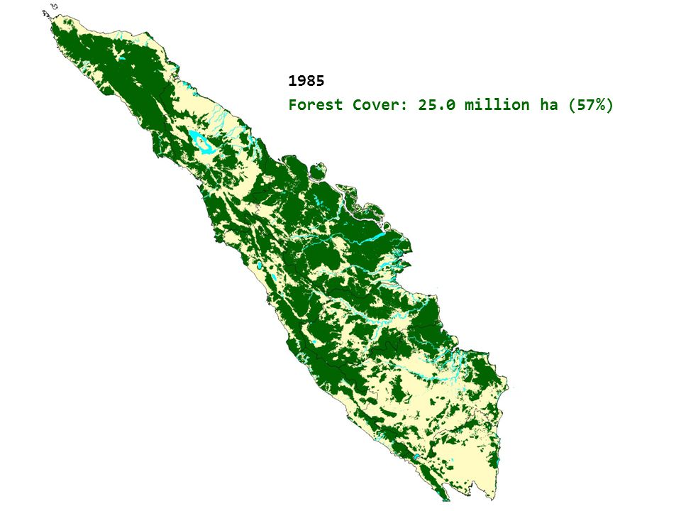 1985 Forest Cover: 25.0 million ha (57%) Natural Forest Cover in Sumatra