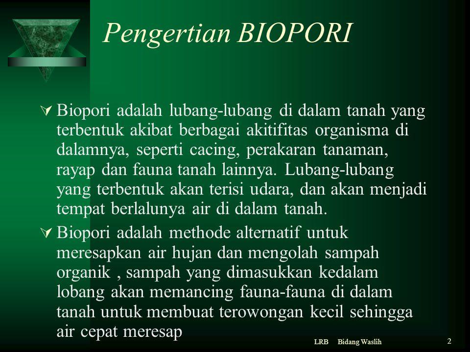 Pengertian BIOPORI  Biopori adalah lubang-lubang di dalam tanah yang terbentuk akibat berbagai akitifitas organisma di dalamnya, seperti cacing, pera