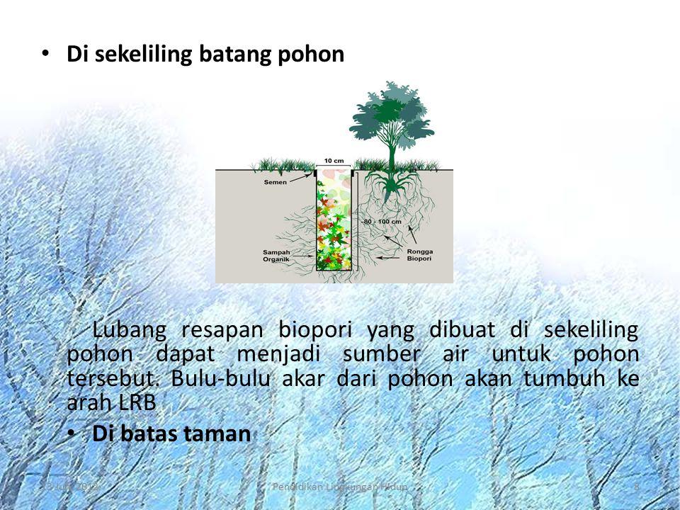 Di sekeliling batang pohon Lubang resapan biopori yang dibuat di sekeliling pohon dapat menjadi sumber air untuk pohon tersebut. Bulu-bulu akar dari p