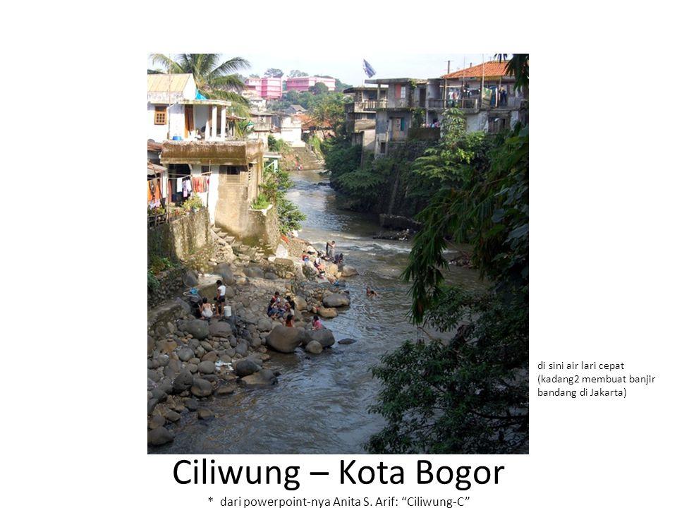 """Ciliwung – Kota Bogor * dari powerpoint-nya Anita S. Arif: """"Ciliwung-C"""" di sini air lari cepat (kadang2 membuat banjir bandang di Jakarta)"""