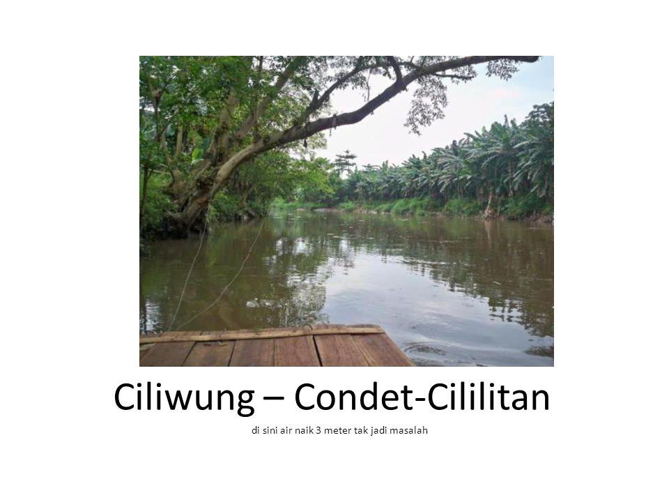 Ciliwung – Condet-Cililitan di sini air naik 3 meter tak jadi masalah