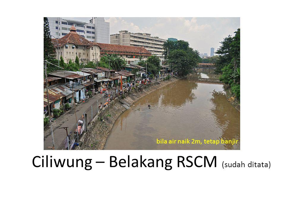 Ciliwung – Belakang RSCM (sudah ditata) bila air naik 2m, tetap banjir