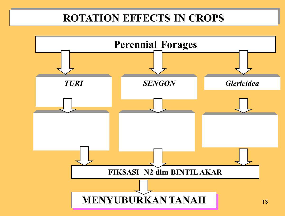 13 ROTATION EFFECTS IN CROPS Perennial Forages TURISENGON FIKSASI N2 dlm BINTIL AKAR MENYUBURKAN TANAH Glericidea