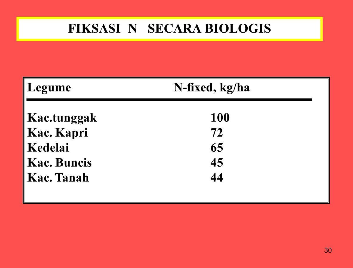 30 FIKSASI N SECARA BIOLOGIS LegumeN-fixed, kg/ha Kac.tunggak100 Kac. Kapri72 Kedelai65 Kac. Buncis45 Kac. Tanah44