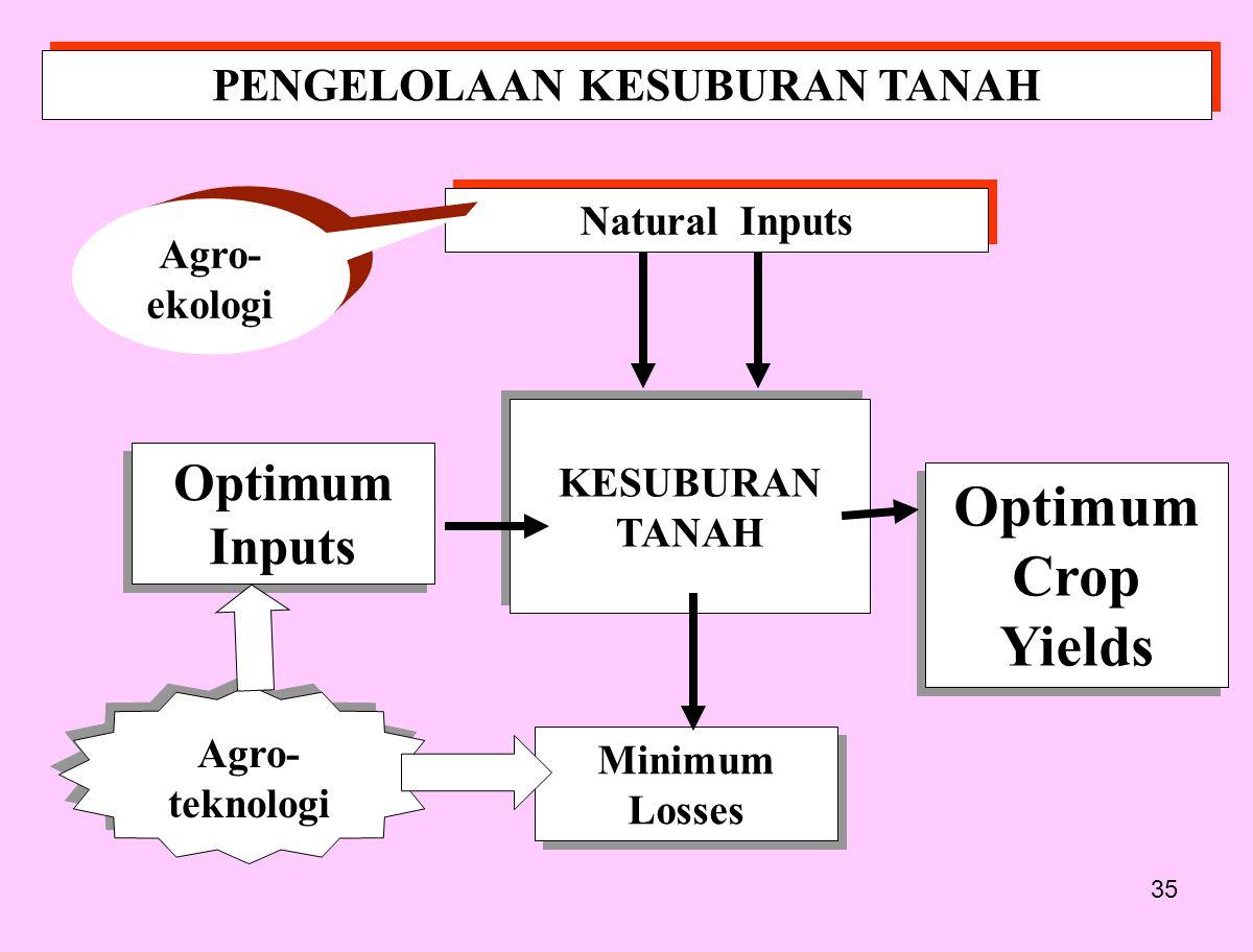 35 PENGELOLAAN KESUBURAN TANAH KESUBURAN TANAH Optimum Crop Yields Optimum Crop Yields Optimum Inputs Minimum Losses Natural Inputs Agro- teknologi Ag