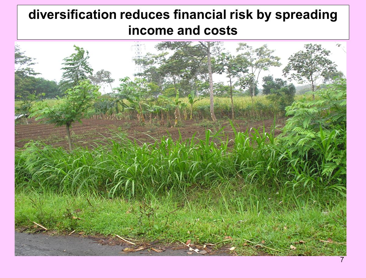 7 diversification reduces financial risk by spreading income and costs