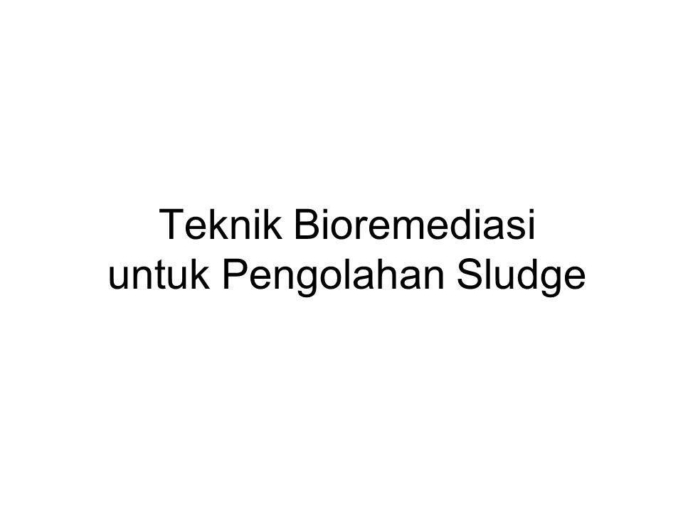 Teknik Bioremediasi untuk Pengolahan Sludge