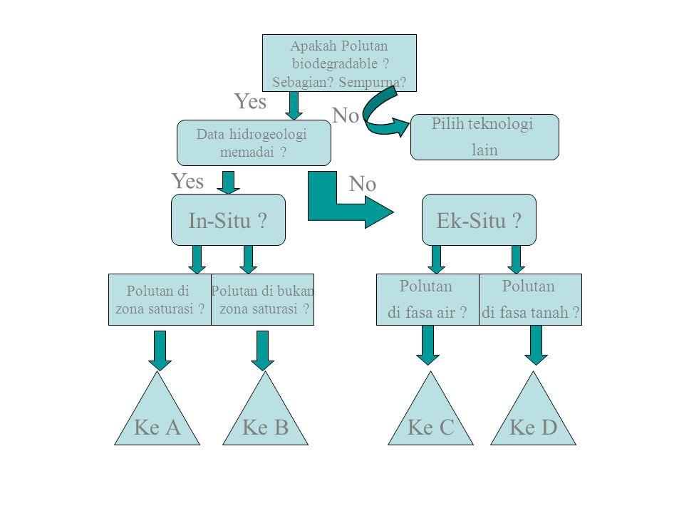 End Point Tidak hanya berdasarkan konsentrasi, namun juga % TPH removal (pencapaian salah satu seharusnya sudah dipandang sebagai kriteria sukses) Variable daerah (pemukiman, industri, industri minyak, komersial, pertanian) Species tambahan dapat dijadikan kriteria juga (misalkan B,T,E,X) Logam berat tidak relevan untuk dijadikan sebagai salah satu kriteria
