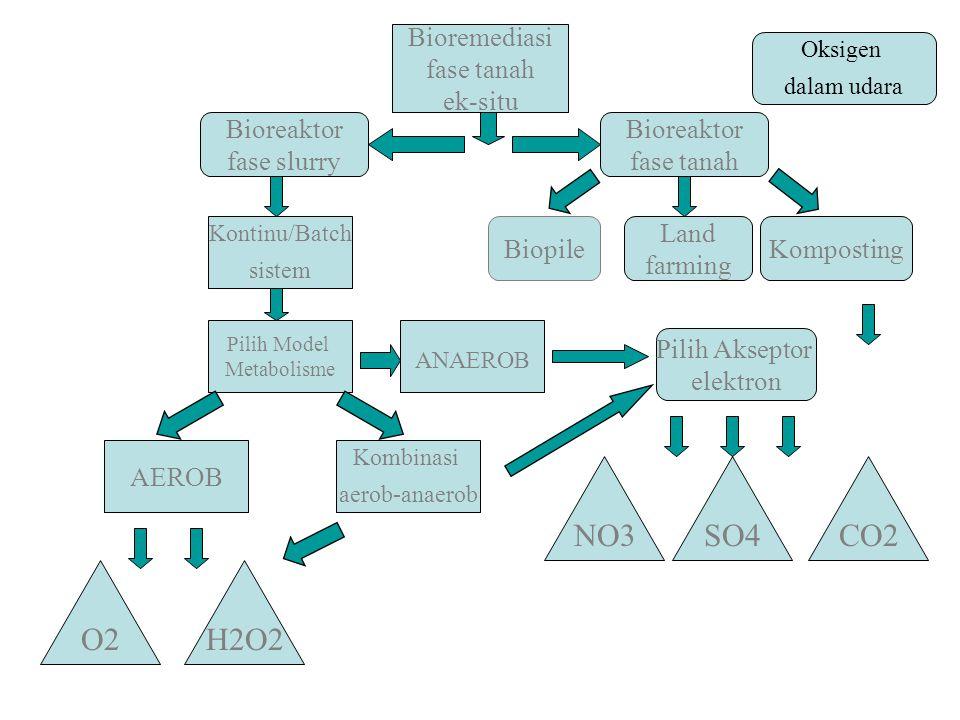 Bioremediasi fase tanah ek-situ Komposting Pilih Akseptor elektron AEROB Pilih Model Metabolisme Kombinasi aerob-anaerob ANAEROB O2H2O2 NO3SO4 Oksigen