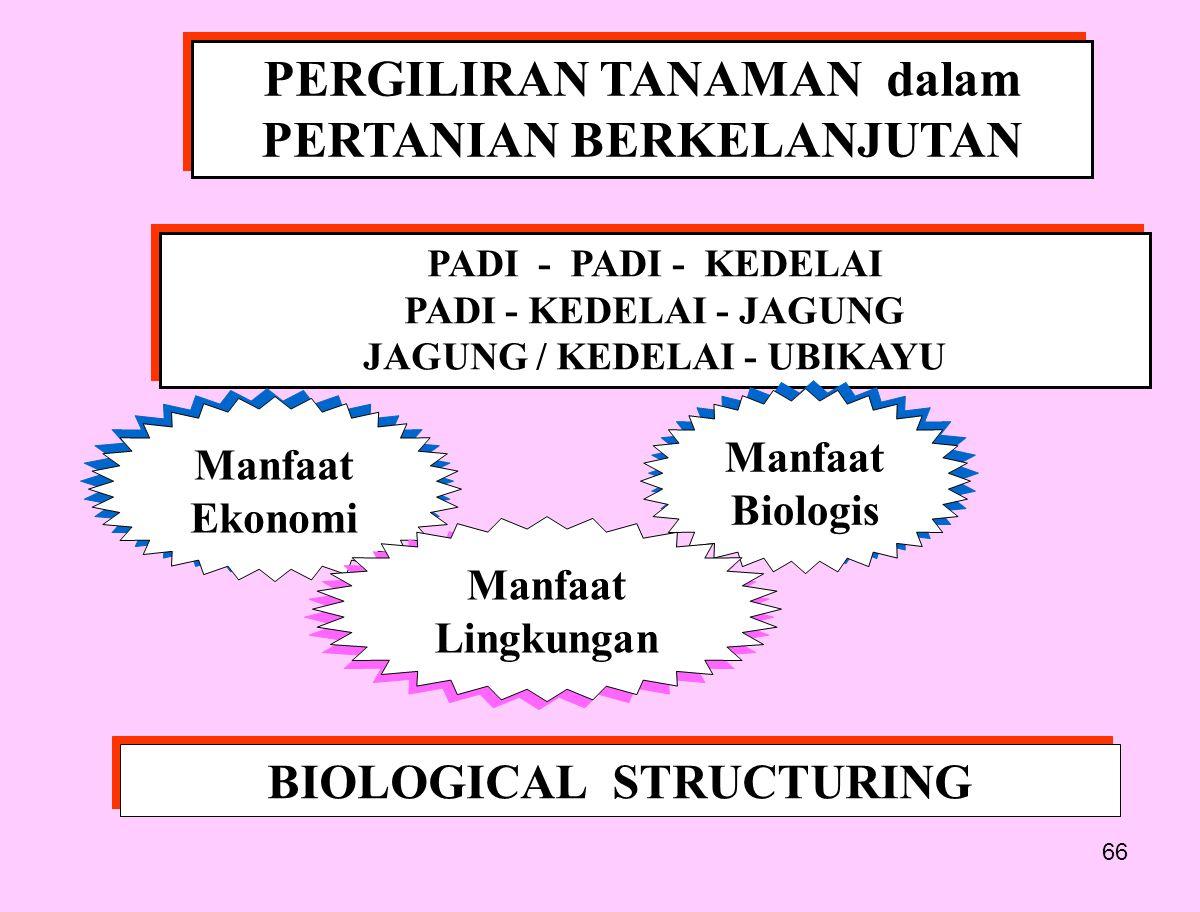 66 PERGILIRAN TANAMAN dalam PERTANIAN BERKELANJUTAN PADI - PADI - KEDELAI PADI - KEDELAI - JAGUNG JAGUNG / KEDELAI - UBIKAYU PADI - PADI - KEDELAI PADI - KEDELAI - JAGUNG JAGUNG / KEDELAI - UBIKAYU Manfaat Ekonomi Manfaat Biologis Manfaat Lingkungan BIOLOGICAL STRUCTURING